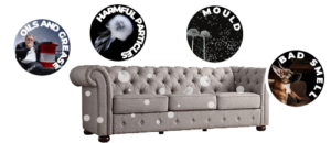 patty plus upholstery cleaning